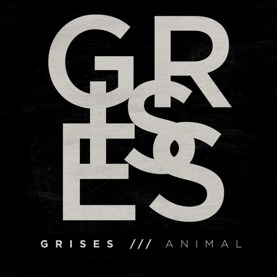grises-animal